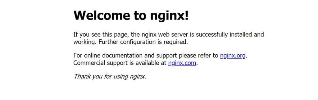 Результат nginx запуска на windows