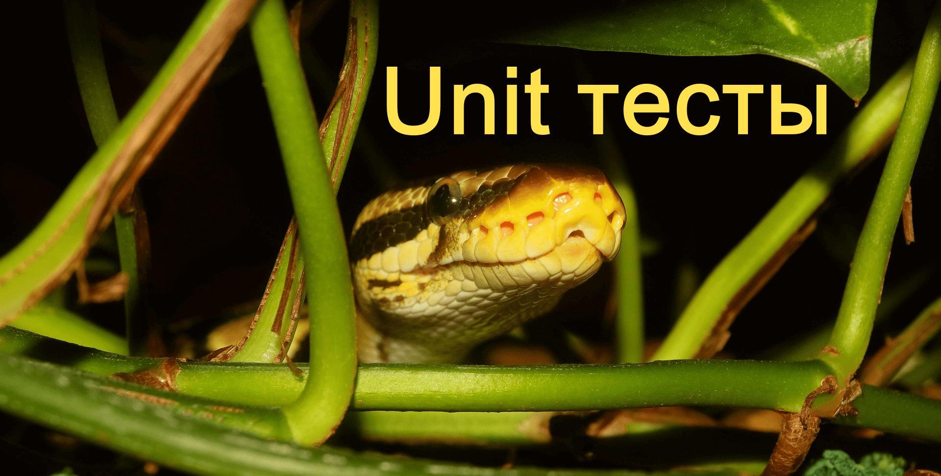 Как работать с unittest на языке Python делаем unit тест