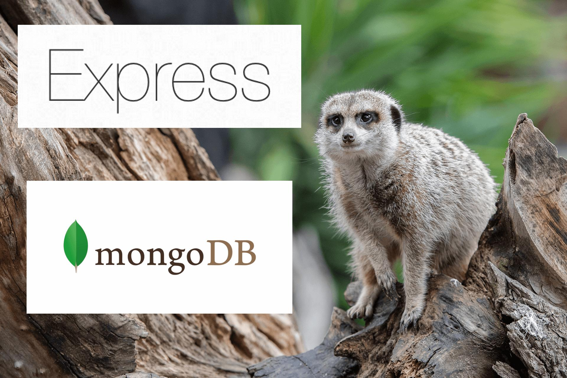 Node.js и Express.js работа с MongoDB и Mongoose